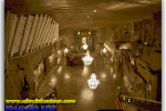 Salt Mine «Wieliczk». Wieliczka. Poland. Tours of Kiev from the Ukrainian Tour (044) 360 5737