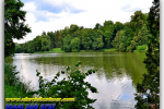 State arboretum  «Trostianets». Travel from Kiev to Ukrainian Tour (044) 360 5737