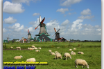Zaanse Schans open air museum. Netherlands. Tours of Kiev from the Ukrainian Tour (044) 360 5737